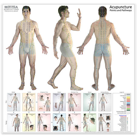 The ULTIMATE Acupuncture Wall Chart